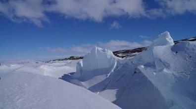 Antarctic, 2014